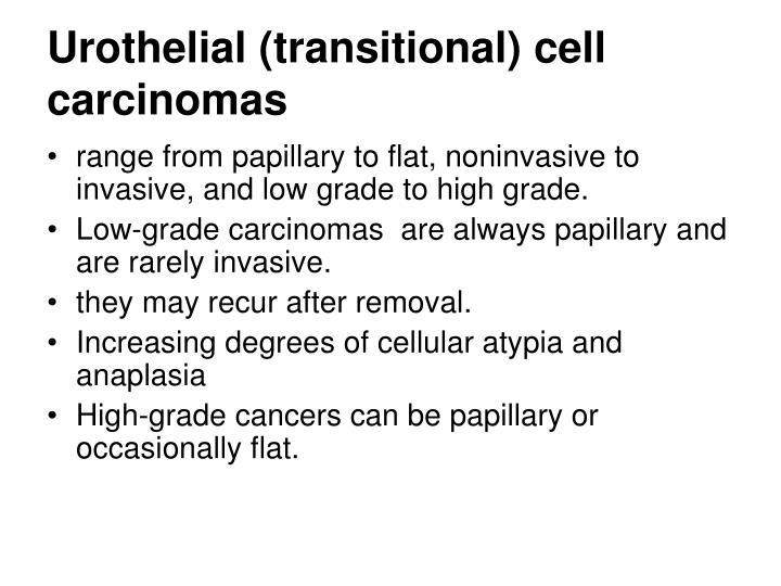 Urothelial (transitional) cell carcinomas