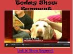 today show segment