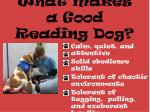 what makes a good reading dog