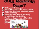 why reading dogs