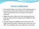 urine collection4
