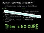 human papilloma virus hpv a virus that is the leading cause for cervical cancer