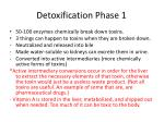 detoxification phase 1