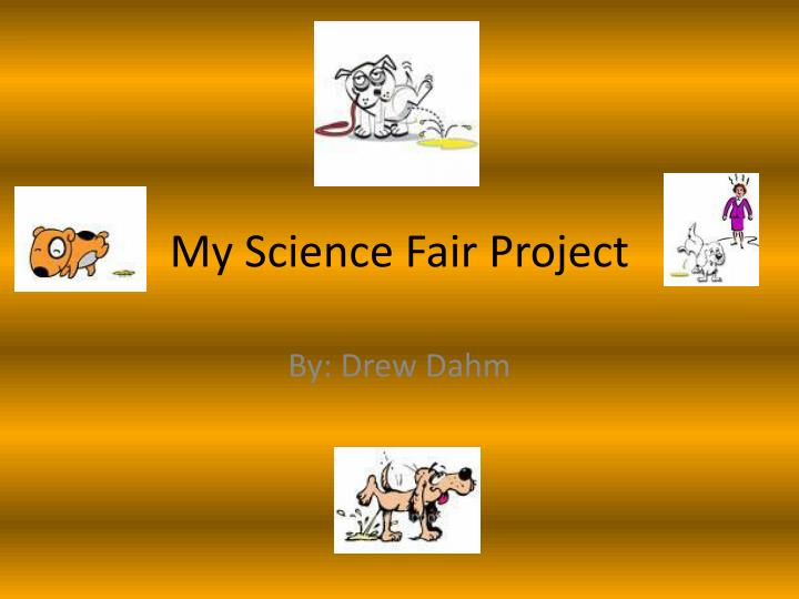 my science fair project n.