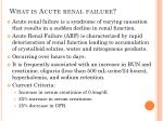 what is acute renal failure