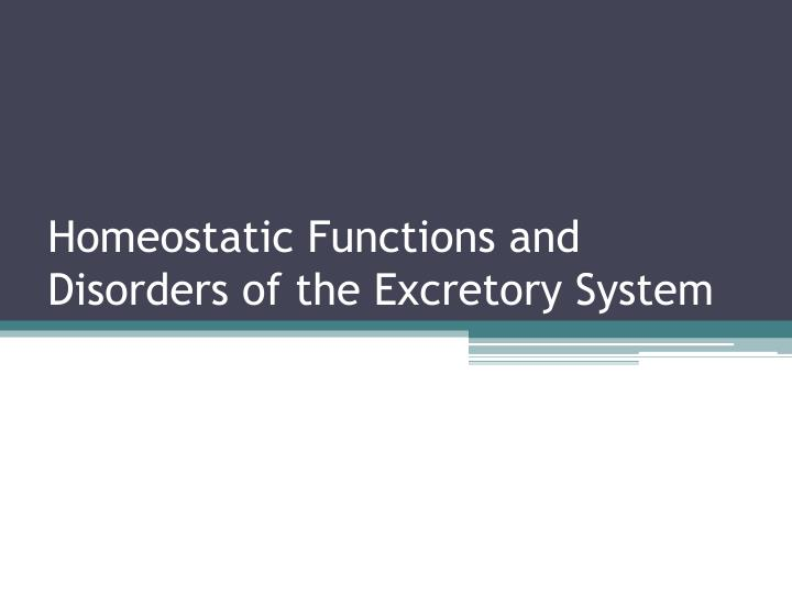 homeostatic functions and disorders of the excretory system n.