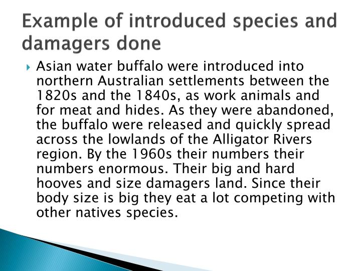 Example of introduced species and damagers done