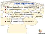 social capital issues