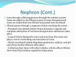 nephron cont