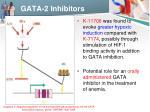 gata 2 inhibitors2