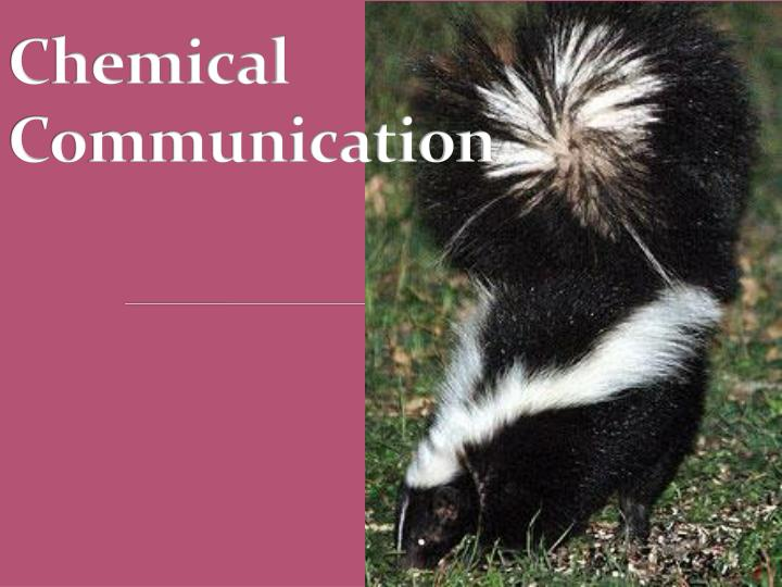 chemical communication n.