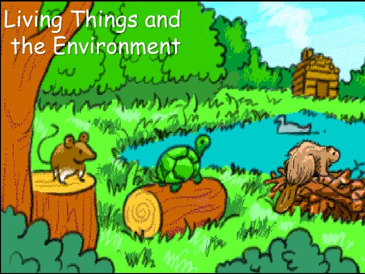 living things and the environment n.