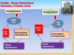 cardio renal interact on basically a vicious circle