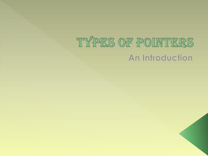types of pointers n.