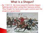 what is a shogun