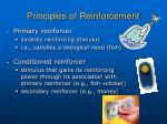 principles of reinforcement