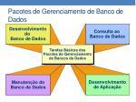 pacotes de gerenciamento de banco de dados