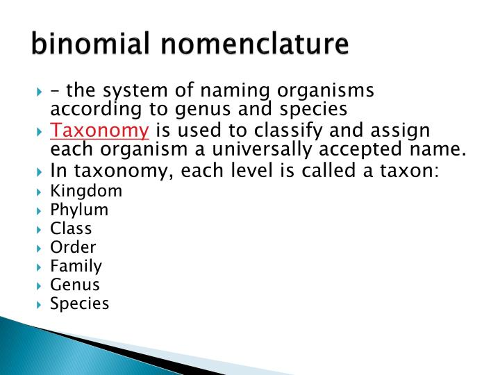 binomial system In biology, binomial nomenclature is the formal system of naming species the system is called binominal nomenclature (particularly in zoological circles), binary nomenclature (particularly in botanical circles), or the binomial classification system.