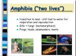 amphibia two lives