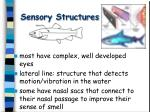 sensory structures