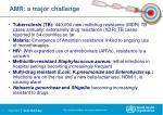 amr a major challenge