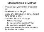 electrophoresis method