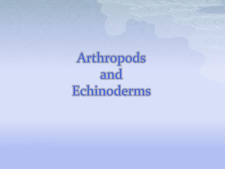 arthropods and echinoderms n.