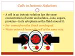 cells in isotonic solutions