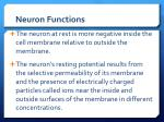 neuron functions1