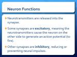 neuron functions5