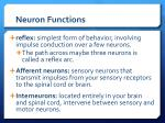 neuron functions7