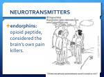 neurotransmitters5