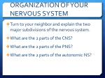 organization of your nervous system5