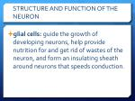 structure and function of the neuron1