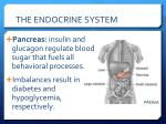 the endocrine system8