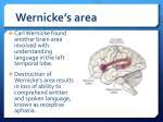 wernicke s area