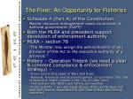 the fixer an opportunity for fisheries