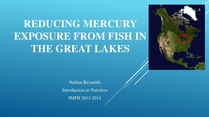 reducing mercury exposure from fish in the great lakes n.