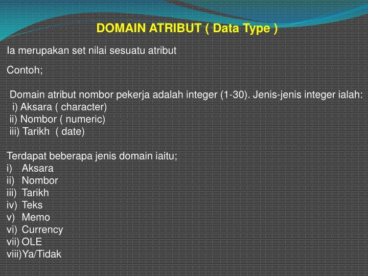 DOMAIN ATRIBUT ( Data Type )
