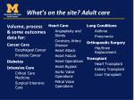 what s on the site adult care