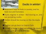 ducks in winter