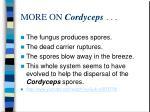 more on cordyceps