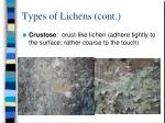 types of lichens cont