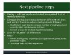 next pipeline steps