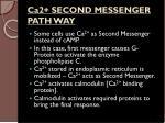 ca2 second messenger path way