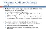 hearing auditory pathway cont d2