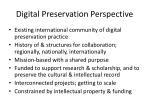 digital preservation perspective