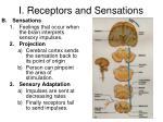 i receptors and sensations1