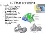 iii sense of hearing3
