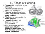 iii sense of hearing4